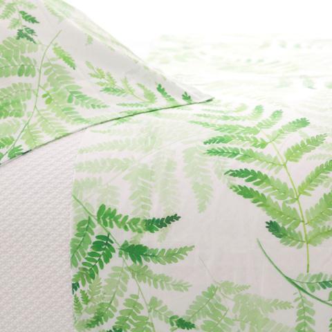 Pine Cone Hill, Inc. - Ferns Pair of Standard Pillowcases - FERCSS