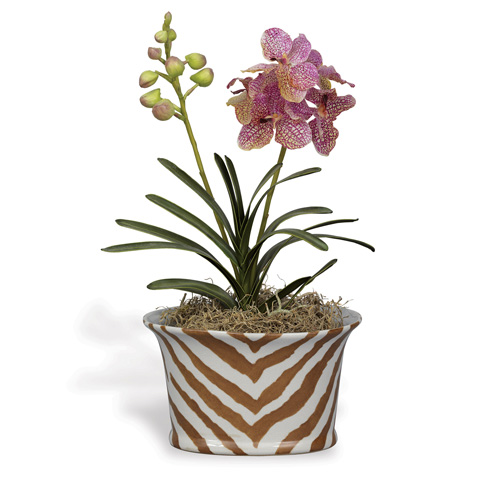 Port 68 - Kenya Oval Planter in Brown - ACBS-111-07