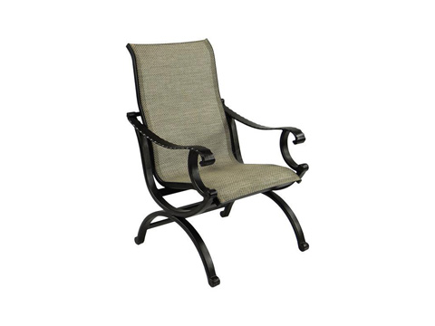 Image of Telluride Sling Dining Chair