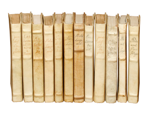 Sarreid Ltd. - Set of 12 Horizontal Title Parchment Books - 25402