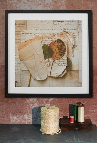 Sarreid Ltd. - Framed Artist Edition Print Square - 28734