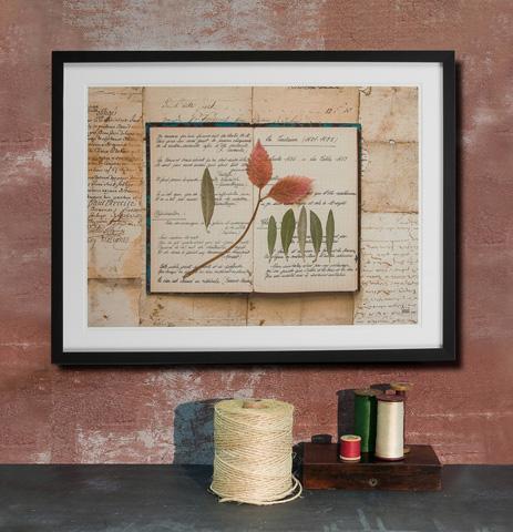 Sarreid Ltd. - Framed Artist Edition Print Rectangle - 28737