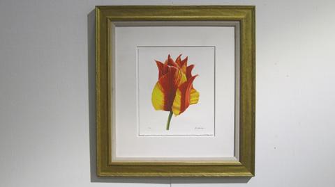 Sarreid Ltd. - Tulip Painting By John Matthew Moore - V00020