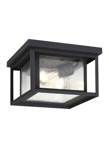 Sea Gull Lighting - Two Light Outdoor Ceiling Flush Mount - 78027-12