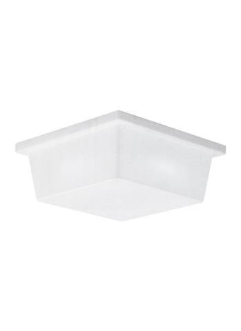 Sea Gull Lighting - Two Light Outdoor Wall / Ceiling Flush Mount - 7916BLE-68
