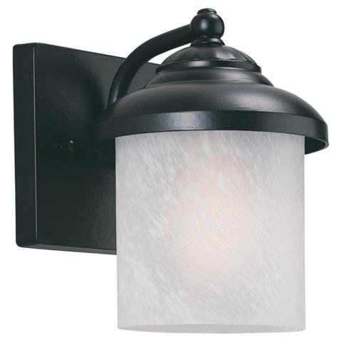 Sea Gull Lighting - One Light Outdoor Wall Lantern - 89048PBLE-12