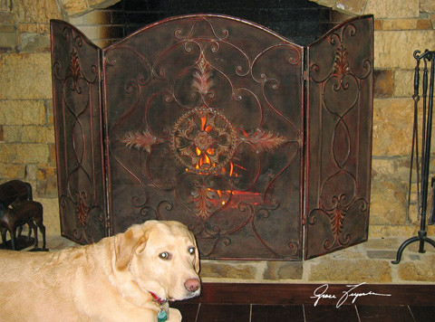 Uttermost Company - Egan Wrought Iron Fireplace Screen - 20508