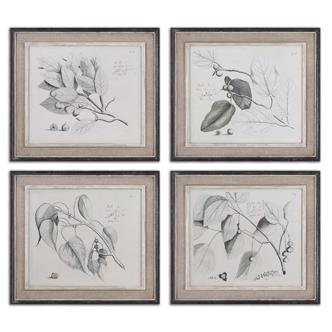 Uttermost Company - Sepia Leaf Study Wall Art - 51073