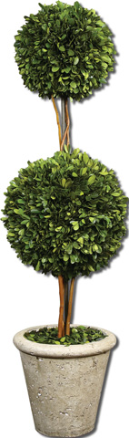 Uttermost Company - Preserved Boxwood Two Sphere Topiar - 60106