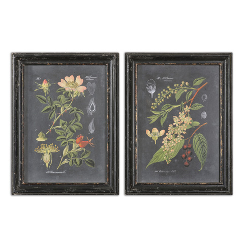Uttermost Company - Midnight Botanicals Art - 56053