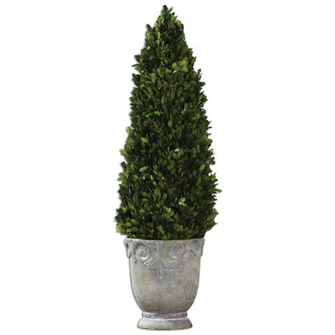 Uttermost Company - Boxwood Cone Topiary - 60111