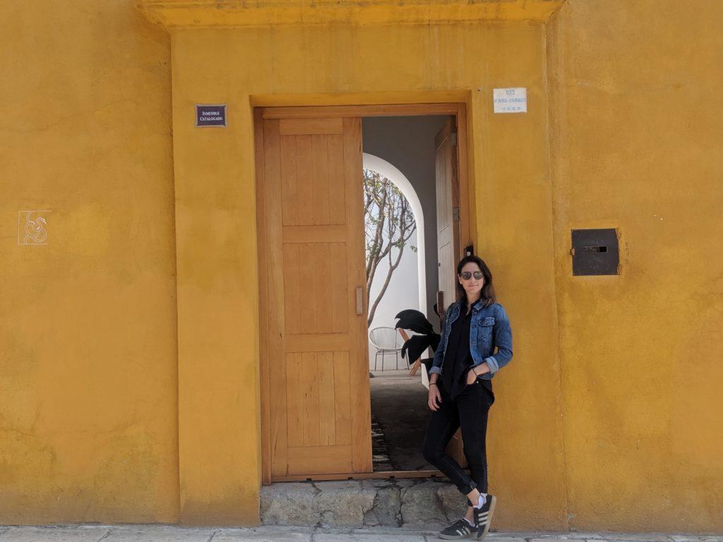 April in Oaxaca! Our newest Fluenz Spanish Immersion program