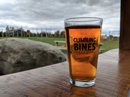 Climbing Bines