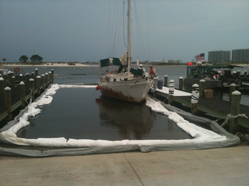 Near Shore & Dockside Cleaning Photo 1
