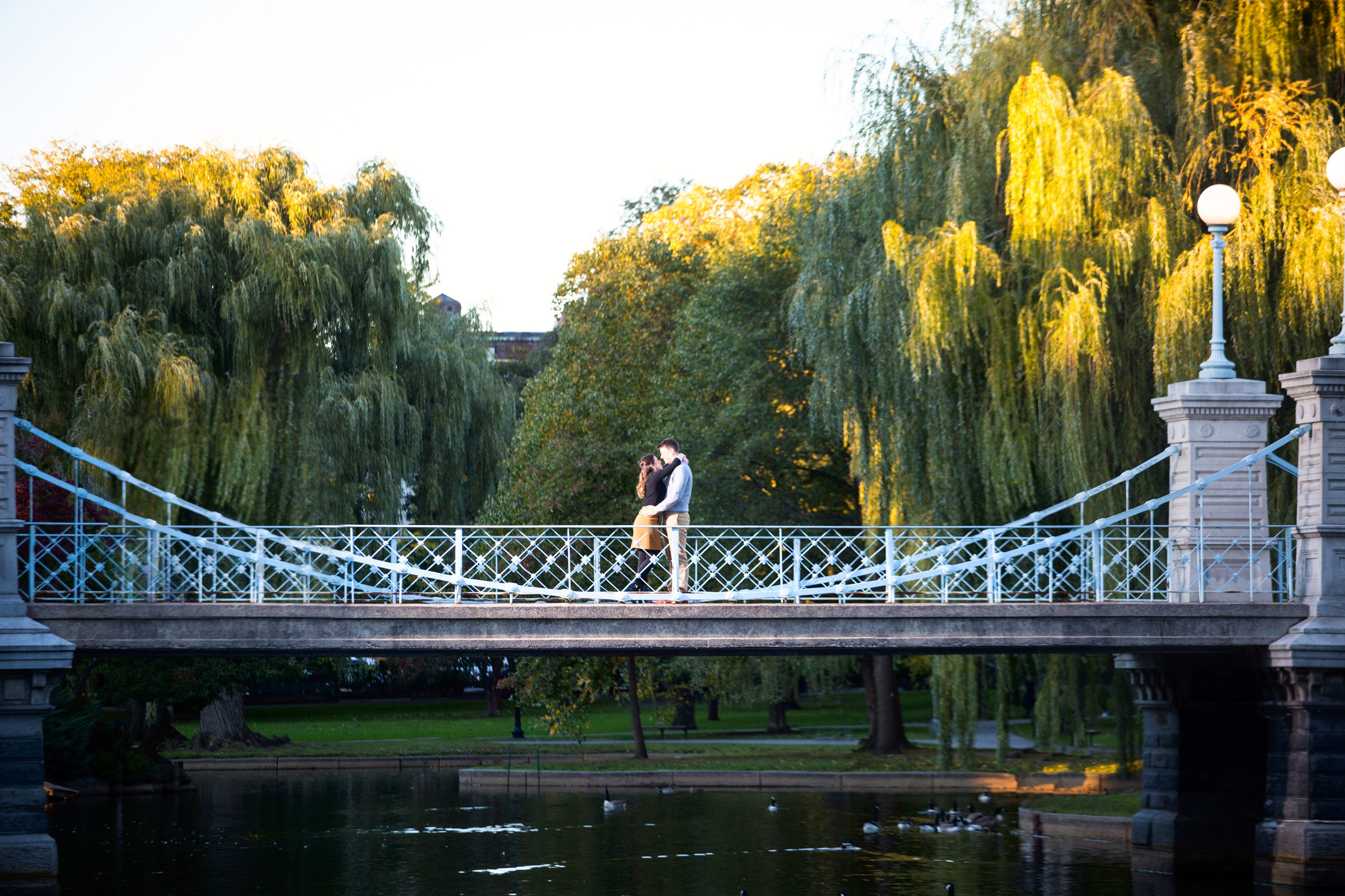 Engagement Pictures at the Boston Public Garden
