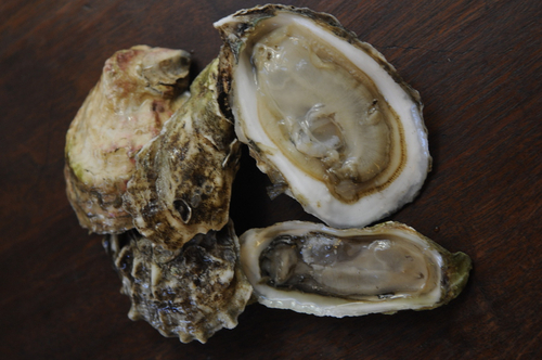 Your Best Way to Prepare Oysters