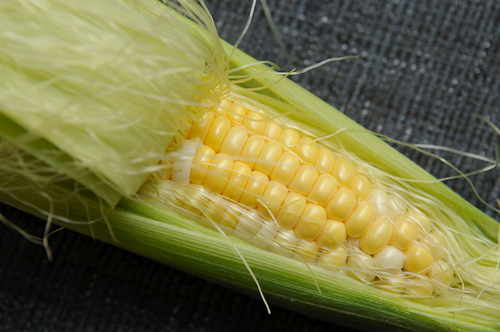 Your Best Corn Recipe