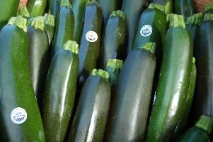 Zucchini Raw (Usda)