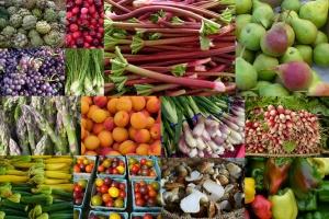 Zucchini Salad (Organic Fresh Zucchini)