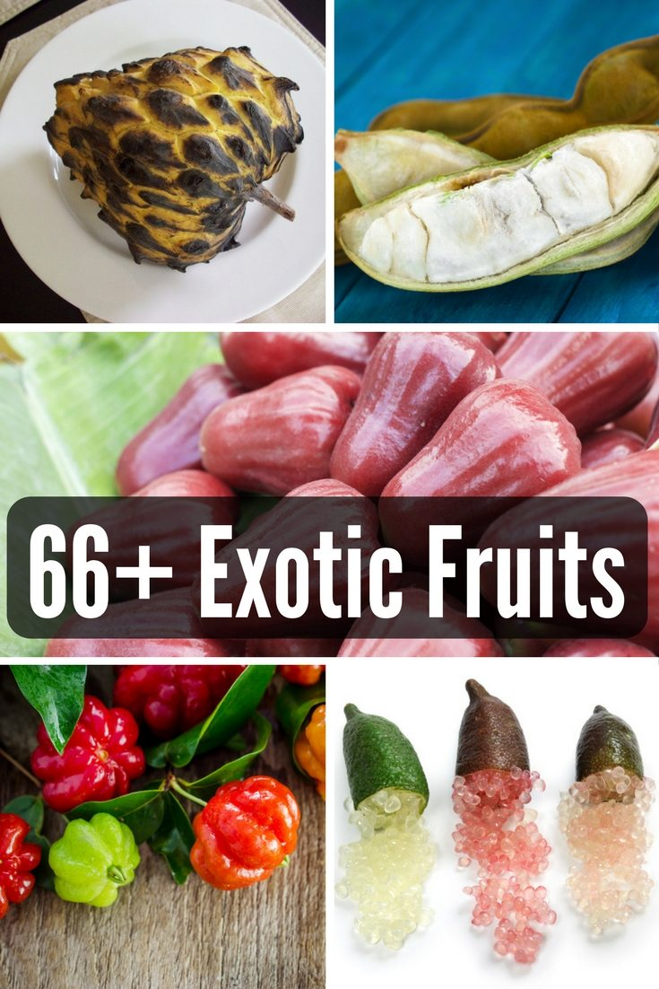 66 Exotic Fruits on FoodForNet.com