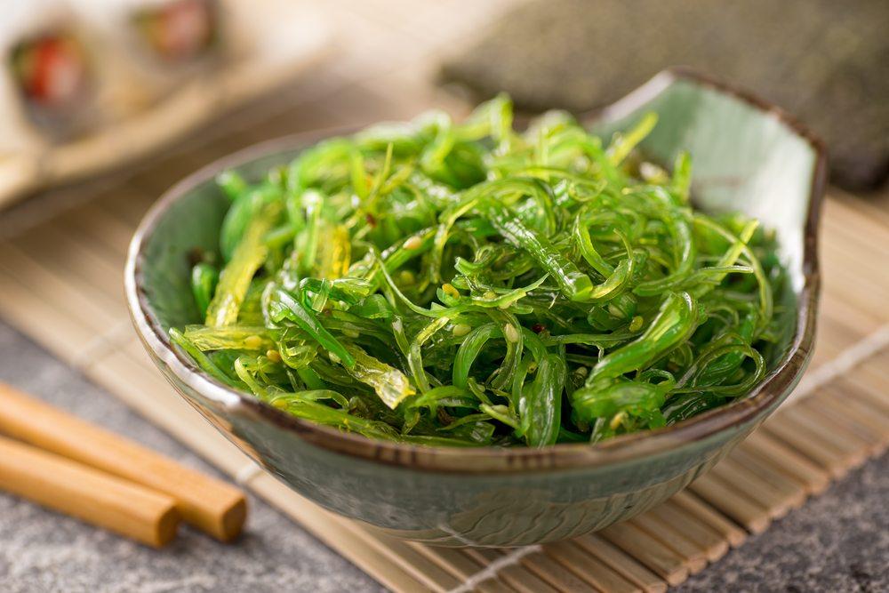 kelp seaweed
