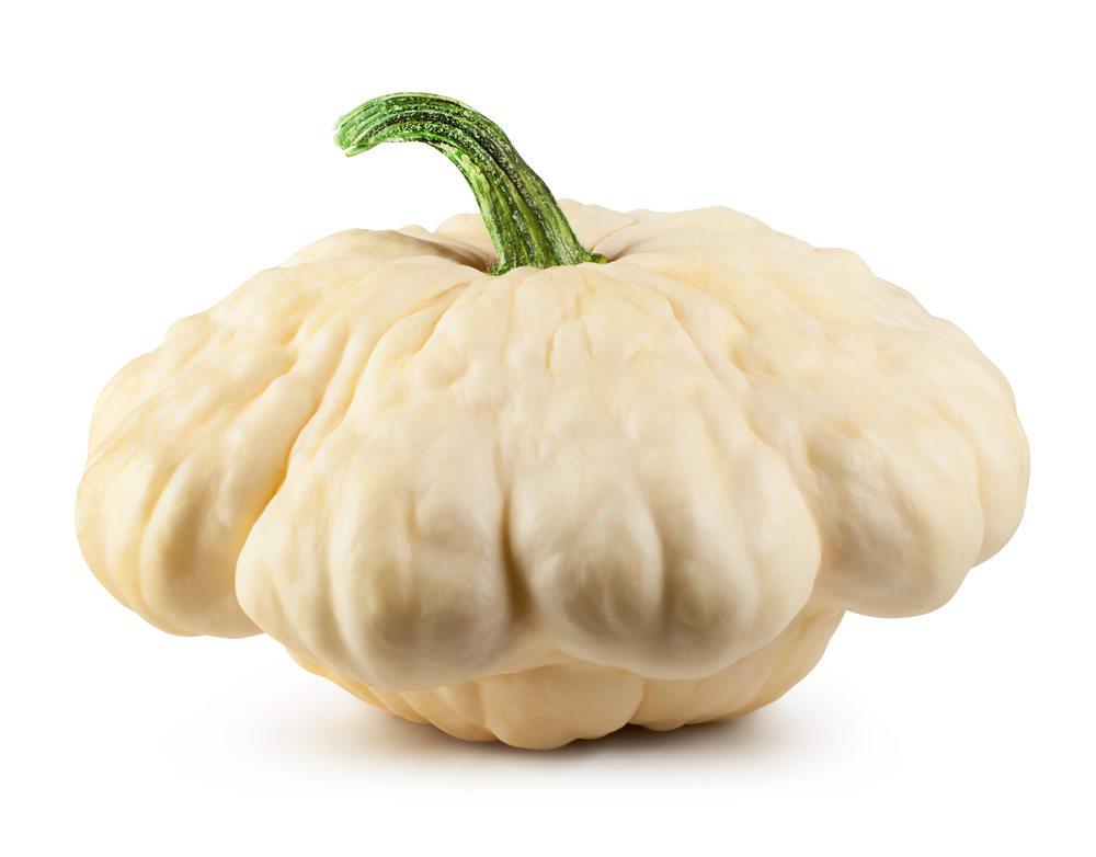 scallop squash
