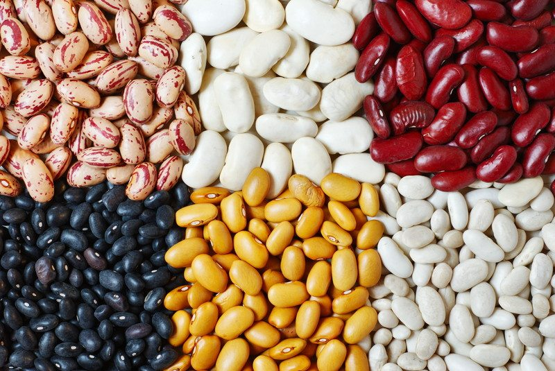 Six different types of beans