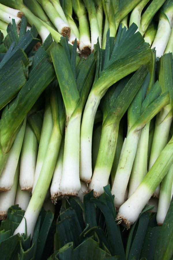 Leeks in a farmers market