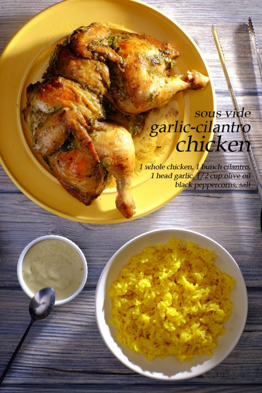 Sous Vide Garlic Cilantro Chicken
