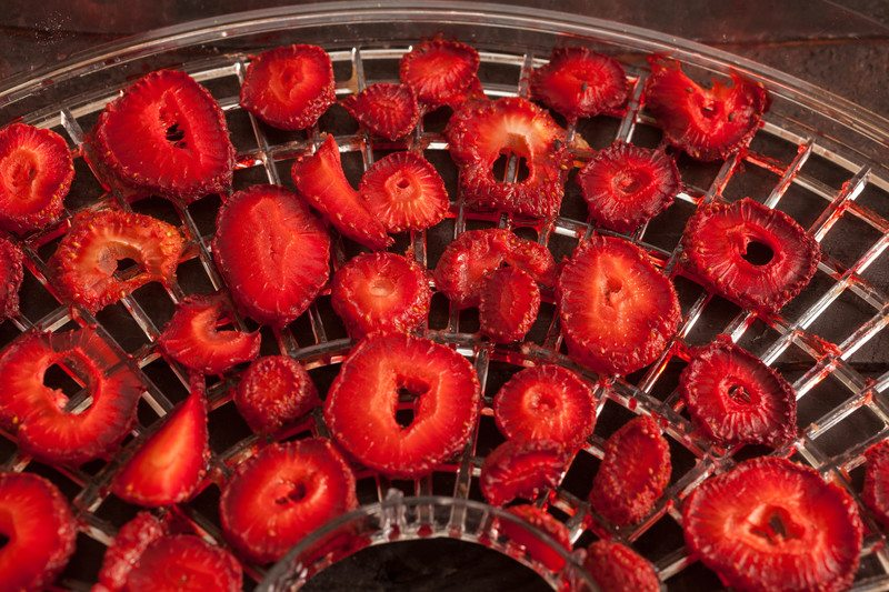 best dehydrator cookbooks