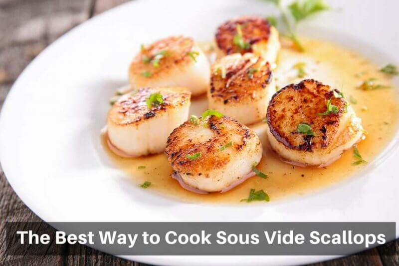 Tips & Tricks: The Best Way to Cook Sous Vide Scallops
