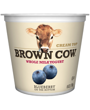 Brown Cow™ Cream Top Blueberry on the Bottom Whole Milk Yogur...