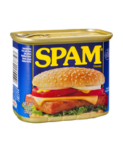 Spam® Classic Canned Meat 12 oz. Can