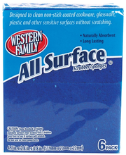Wf Scrubber All Surface