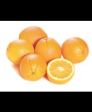 Choice Navel Oranges