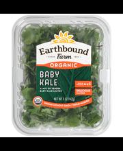 Earthbound Farm® Organic Baby Kale 5 oz. Clamshell