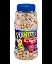 Planters Lightly Salted Dry Roasted Peanuts 16 oz. Jar