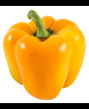 Pepper Orange Bell