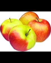 Small Honeycrisp Apples