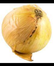 Onions Pickling