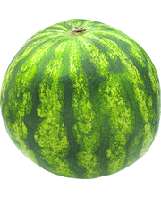 Watermelon Seeded Green River