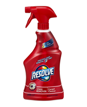 Resolve® Stain Remover Carpet Cleaner 22 fl. oz. Spray Bottle