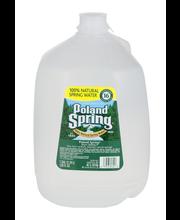 Poland Spring® 100% Natural Spring Water 1 gal. Jug