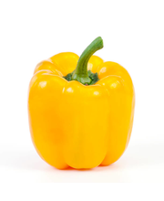 YELLOW PEPPER 1lb