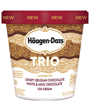 HAAGEN-DAZS Trio Triple Chocolate Ice Cream 14 fl. oz. Carton