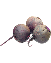 Org Beets Red