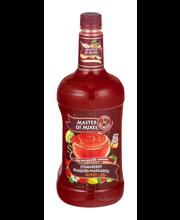 Master of Mixes Strawberry Daiquiri/Margarita Mixer