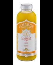 Synergy Organic & Raw Kombucha Drink Mystic Mango