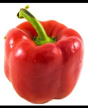 Pepper Red Bell