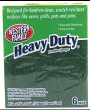 Wf Scrubber Heavy Duty